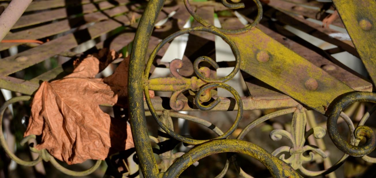Höstfärger och sista pelargoniorna 058